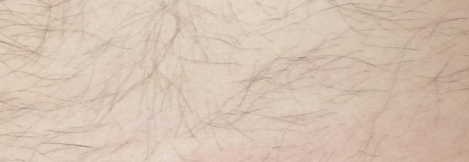photo de couverture de bisounour